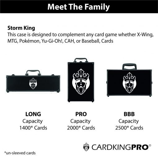 STORM Edition Game Card Storage Case